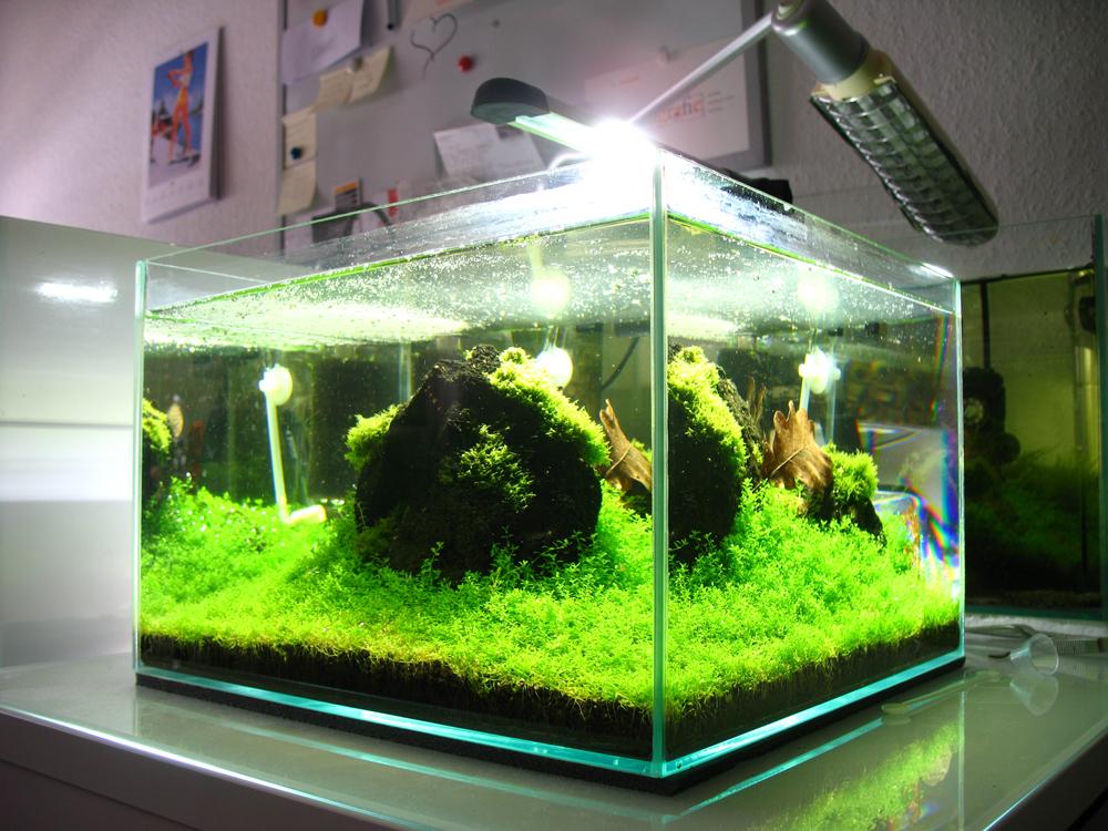 Aquael Led Aquariumleuchte