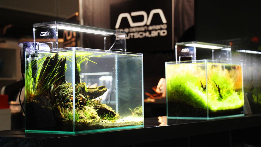 Zwei Aquascapes auf dem ADA-Stand
