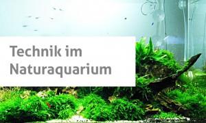 Technik im naturaquarium