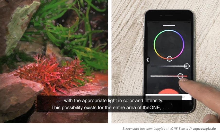 Lupyled-App-Einstellungsmöglichkeiten