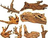 Wohnkult Mangrovenwurzel XL 45-60 cm Deko Aquarium...