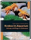 Krebse im Aquarium. Haltung und Pflege im...