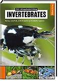 Invertebrates: Shrimp, crayfish, crabs & snails in...