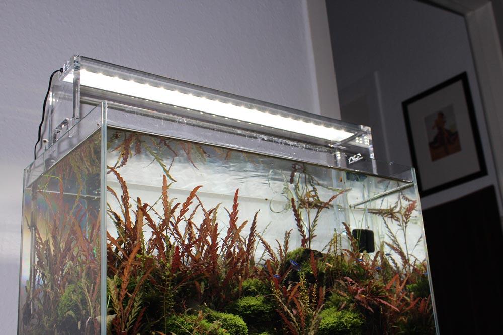 ADA Aquasky auf Glasgarten