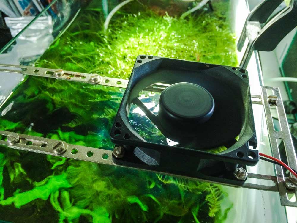 Aquarienkühler und Ventilatoren um Temperaturen im Aquarium zu senken
