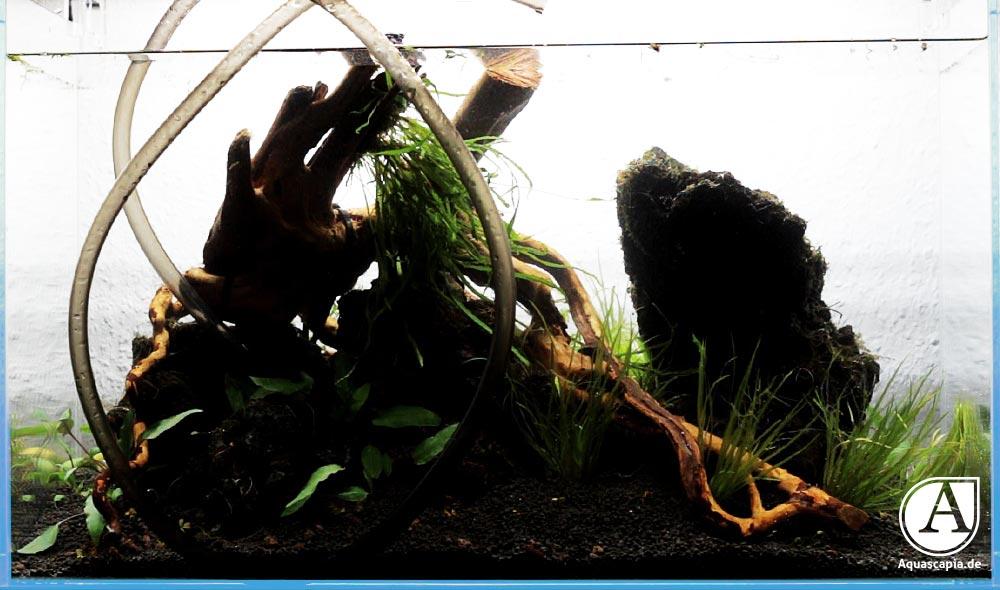 Glasgarten nach Befüllen