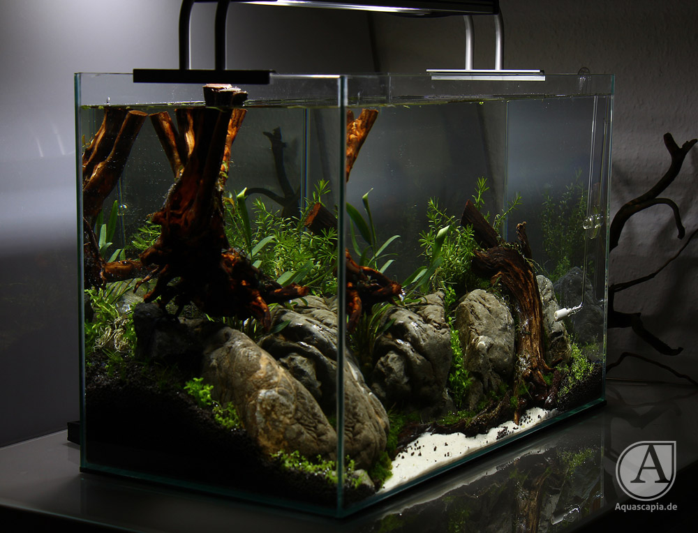 Aquascape links