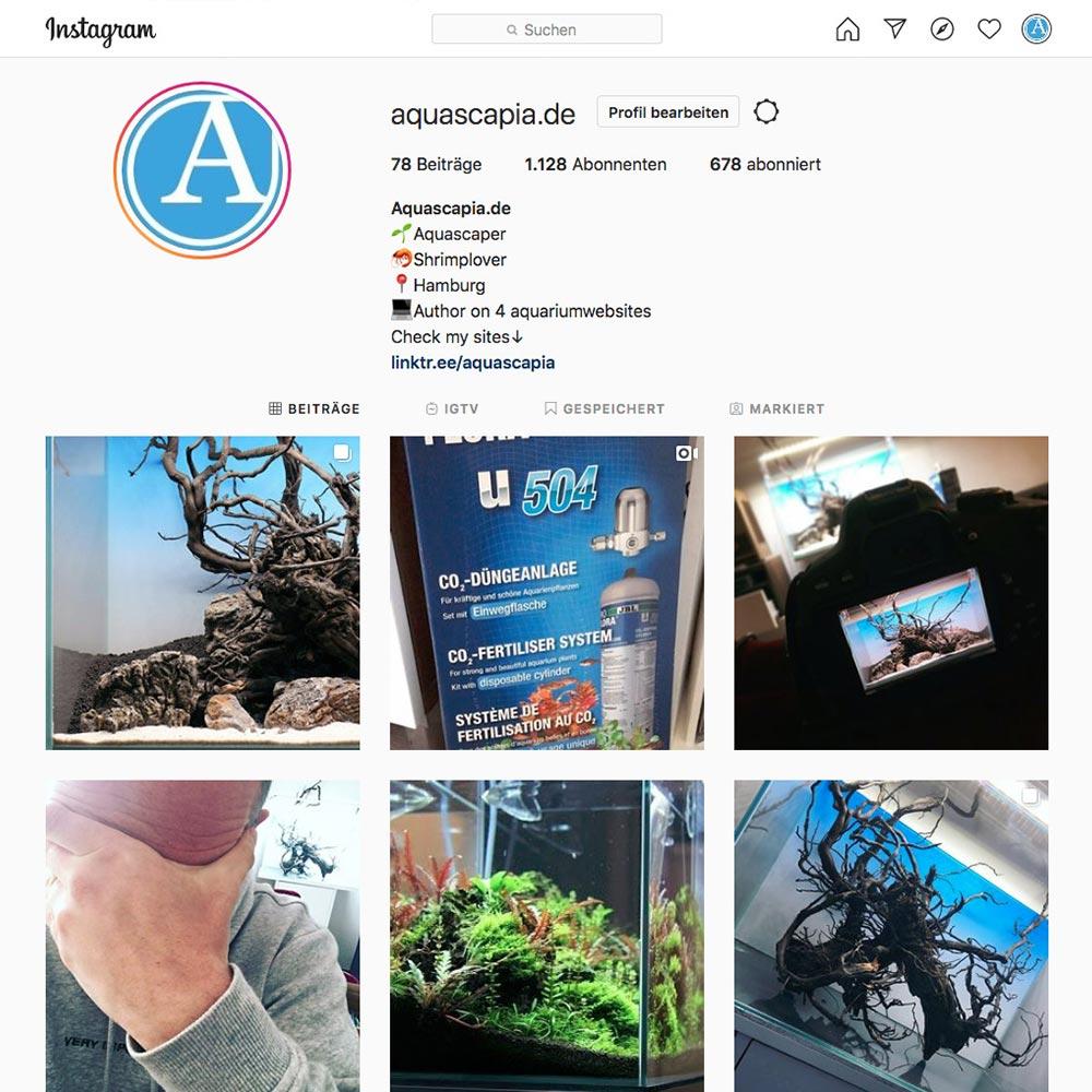 aquascapia auf instagram
